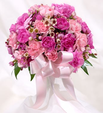 Доставка цветов альпийский мишка заказать букет невесты хабаровск