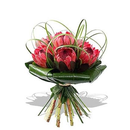 Ночью купить цветы тула доставка цветов тимертау