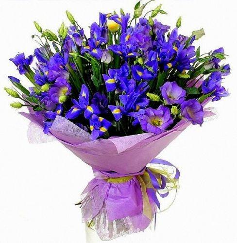 Цветы на дом живые доставка букет гербер купить с доставкой