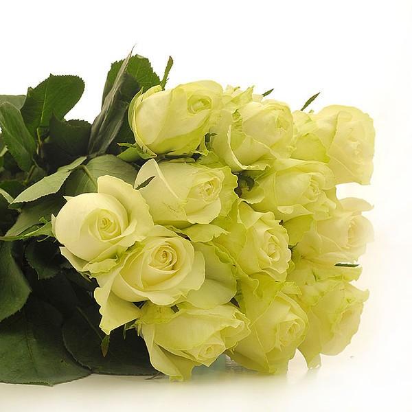 Цветы на заказ в мурманске мыльные лепестки розы купить набор в интернете