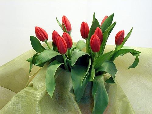 Купить цветы около метро новокузнецкая подарок юбилей женщина