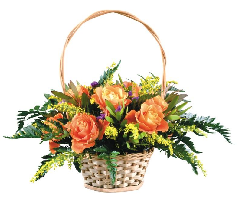 Купить цветы на бабушкинской дешево купить белые цветы