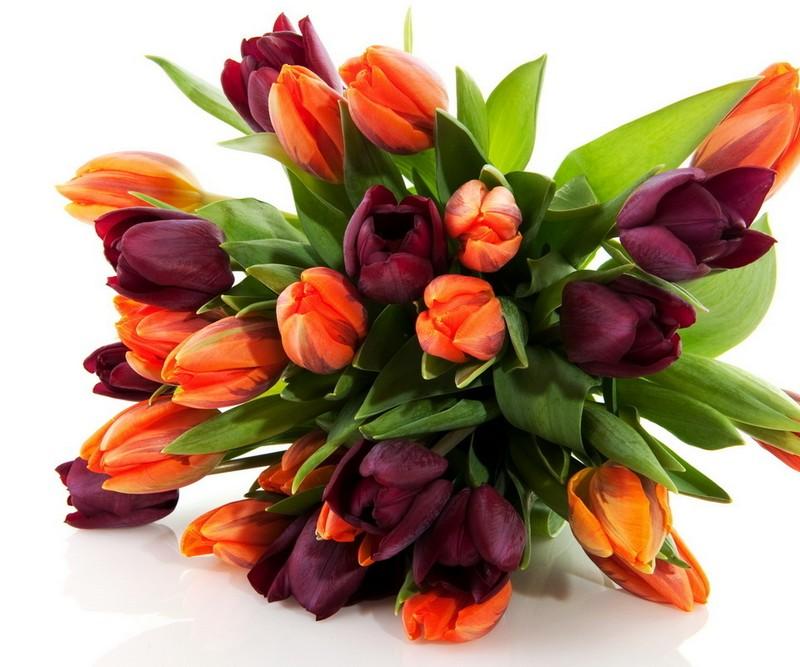 Цветы выращиваемые на заказ доставка цветов в конаково