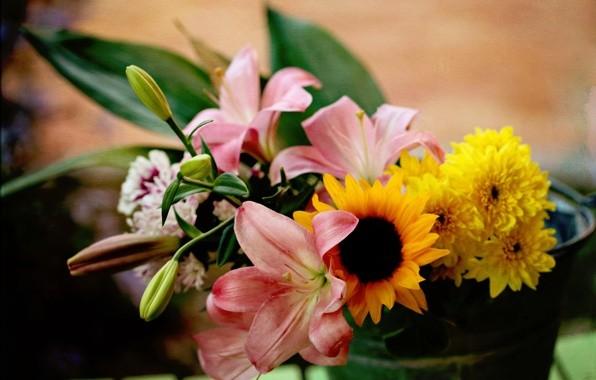Подарить цветов доставка в москве paypal