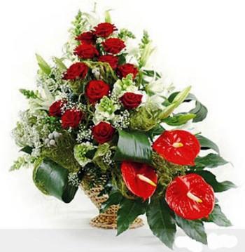Опт цветов с доставка астана милана, доставка корзины цветов спб отзывы