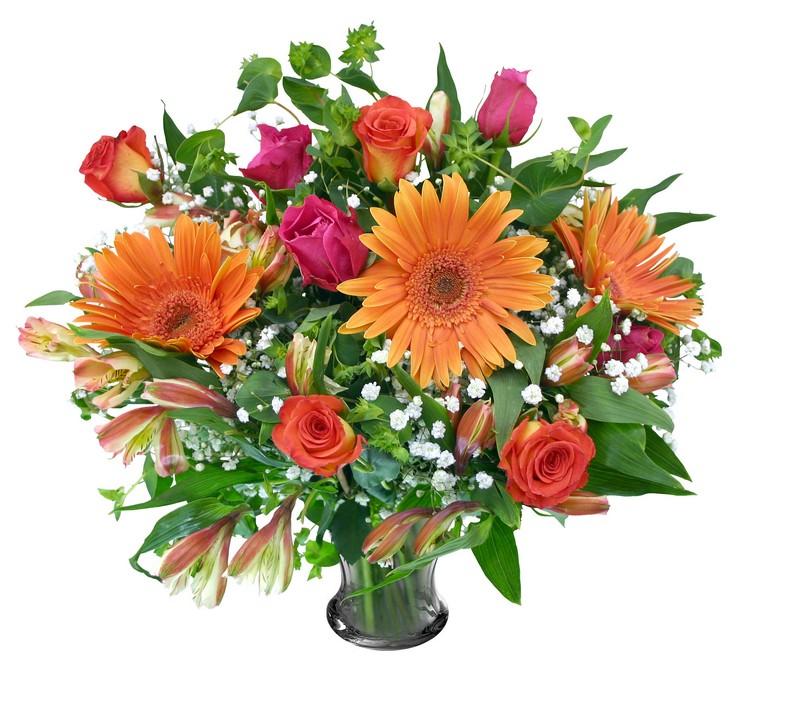 Цветы винница купить, цветы в городе воронеже на две недели