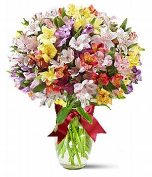 Купить цветы купчино купить искусственные цветы для свадьбы