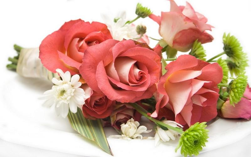 Кирово чепецк доставка цветов доставка цветов тюлбпаны и ирисы