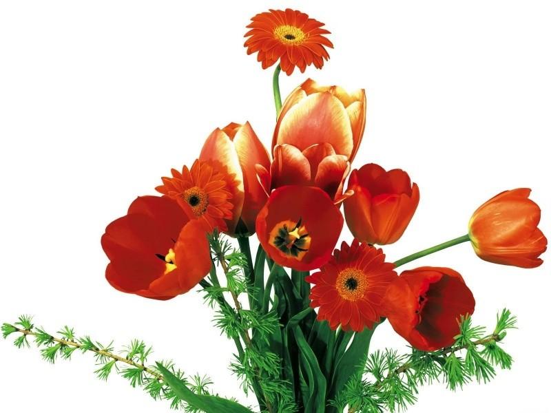 Доставка оригинальных букетов нижний новгород, цветок купить в рб металлоискатель
