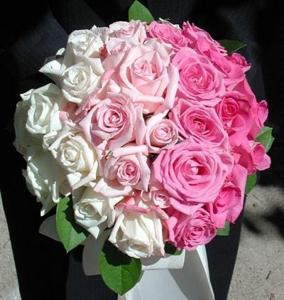Цветы на заказ тольятти купить синие розы архангельск